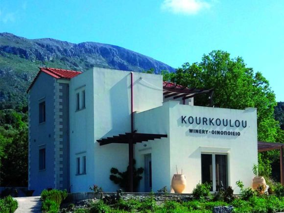 Wine Tasting – visit Kourkoulou Winery